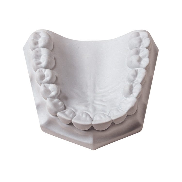 white dental clay model mold for dental product photography example